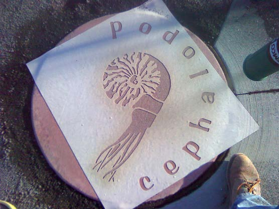 Stencil for concrete used in a Spokane playground. Cephalopod stencil