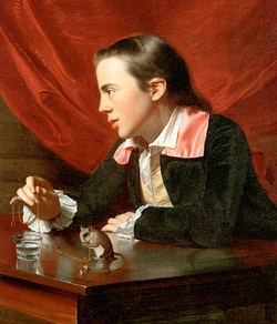 "John Singleton Copley, ""A Boy with a Flying Squirrel (Henry Pelham),"""