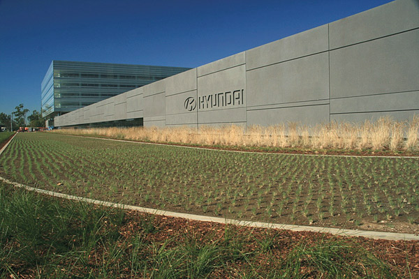 grass field with concrete wall