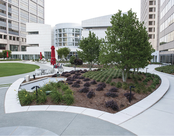 integral/color hardener project by ruppert landscape