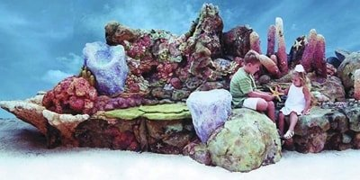 Large colorful concrete reef made by Kia Ricchi