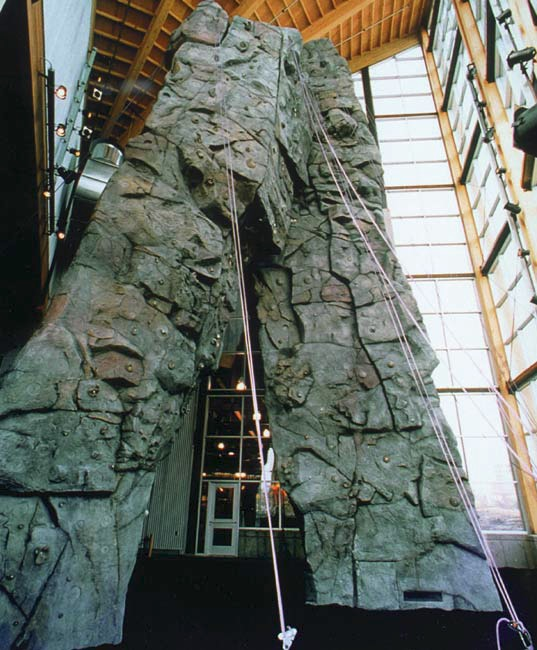 Custom rock climbing walls made with decorative concrete.