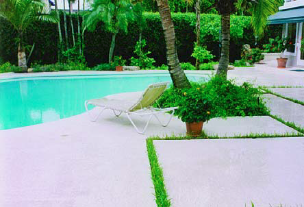 Using elements of the natural surrounding such as grass is a great way to liven up a pool deck.