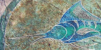 Swordfish image stamped and colored into a concrete overlay.