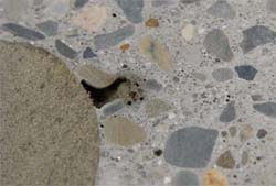 Even bug holes the size of this one can be filled using a grout-and-topcoat method.