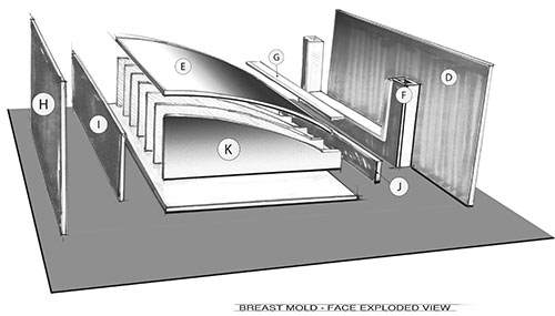 The breast mold face in an exploded view.