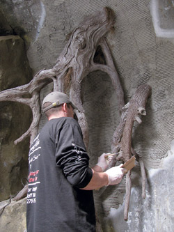 When all the epoxy work is done, it is colored using exterior flat house paint. Step six creating tree roots out of epoxy.