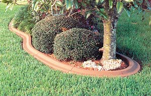 Designer concrete edging around island in grass with tree and shrubs. Excellent edition to any yardscape.