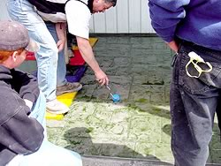 Use a small texture roller to touch up the edges of a stamped concrete print before the concrete is set too much.