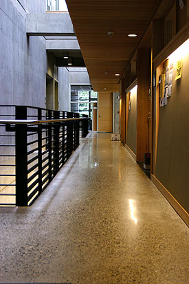 Polished concrete allows the advantage of utilizing the thermal mass of concrete in heating and cooling.