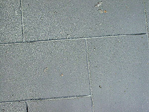 Large rectangle shaped cuts into concrete with a air brushed finish to the concrete.