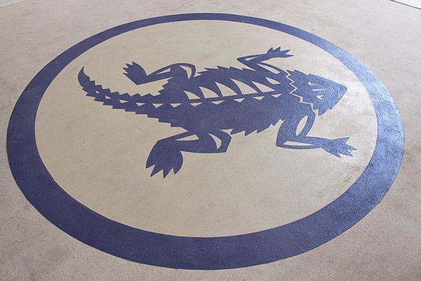 Polished and colored concrete TCU horned frog