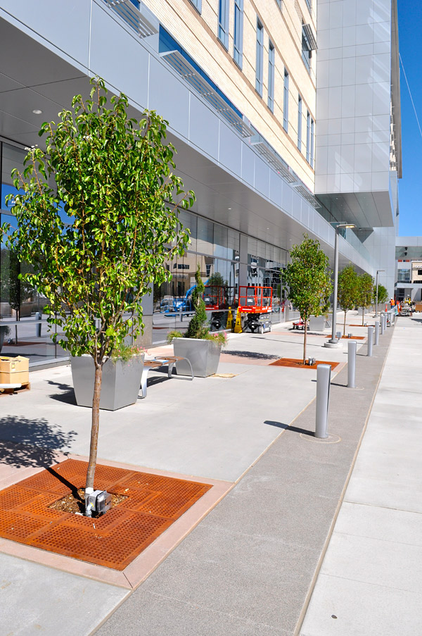 Colorado Hardscapes installed decorative concrete, standard gray concrete, tree grates, benches, planters and bollards at Saint Joseph Hospital in Denver. Photos courtesy of Colorado Hardscapes