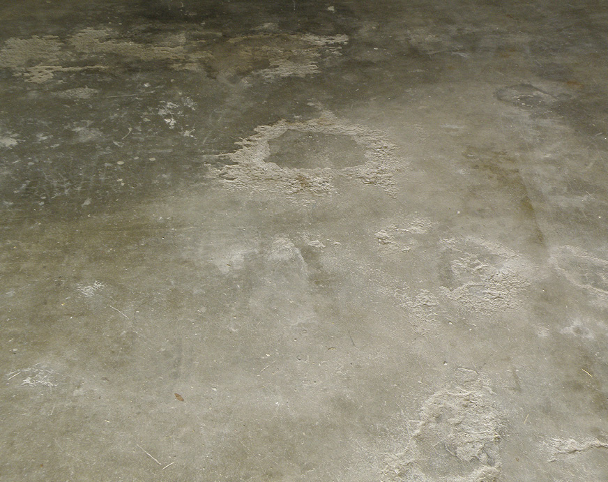Remediating Moisture In Concrete Doesn