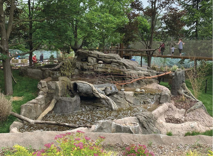 For this project, Beyond Vertical Concrete teamed up with Michigan Shotcrete Construction to refurbish the red panda exhibit for the Detroit Zoo. The rock formation with its aesthetic shotcrete veneer and faux bois accents houses a pump house. The exhibit opened in late 2018.