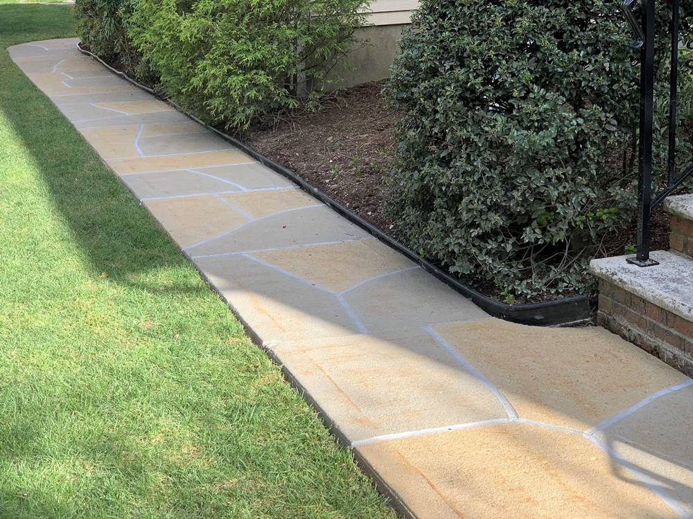 concrete design franchise business from ReneKrete helps you to expand your offerings from just pool decks to things like concrete walkways seen here