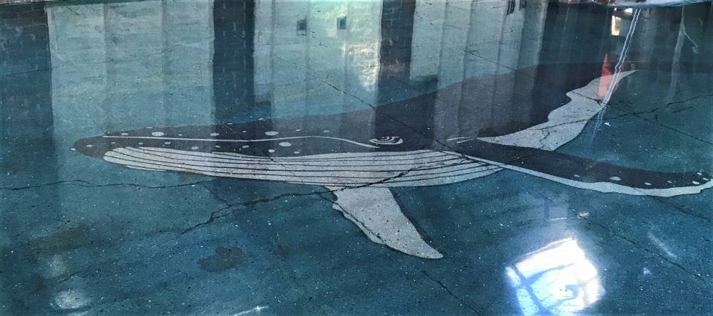 Concrete floor with a stenciled whale by Floormaps