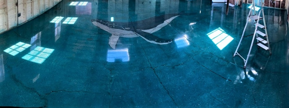 stenciled artwork in the shape of a whale on a blue dyed concrete floor