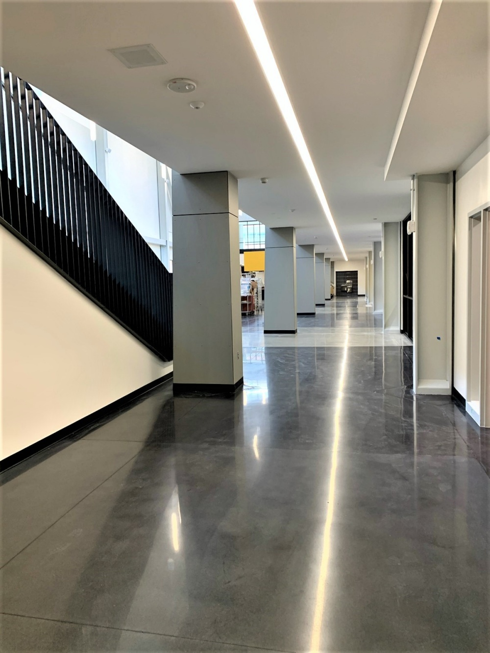 a polished concrete hallway in a middle school was preserved with Temporary floor protection by Skudo