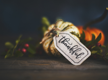 A Thanksgiving Perspective from Concrete Decor