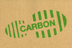 a picture of a carbon footprint to stand for reducing carbon emissions