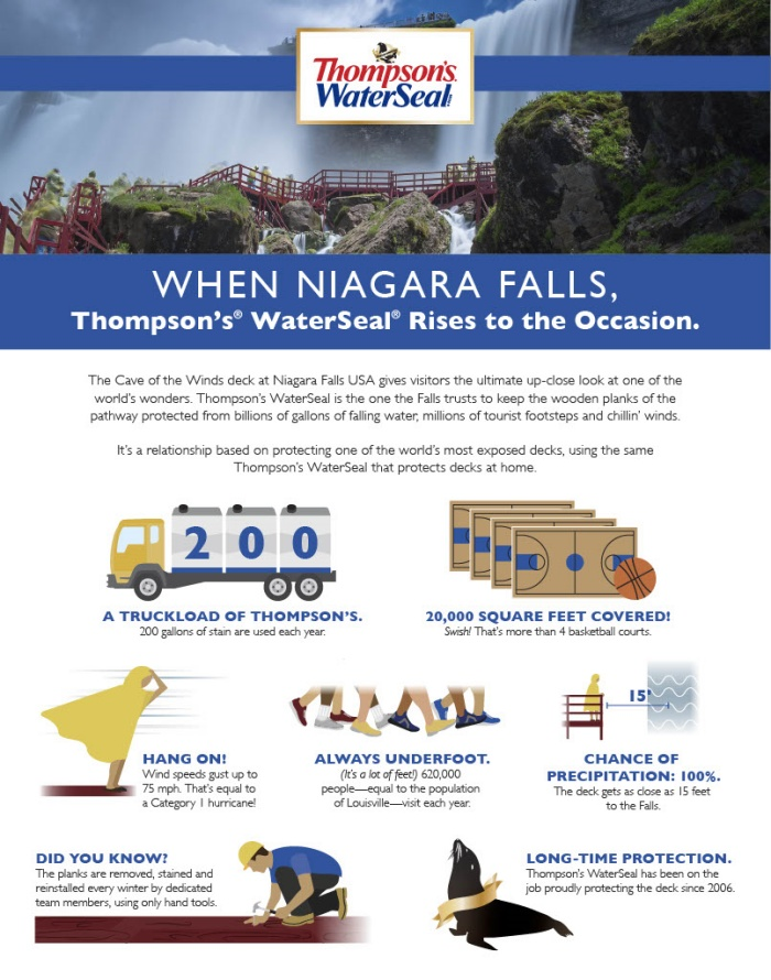 Thompson's WaterSeal Products Infographic