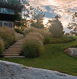 Slim colored concrete stairs wind between lavender on a New England residential hillside.