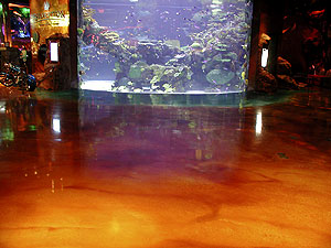 This brown stained concrete floor butts up to an aquarium of tropical fish.